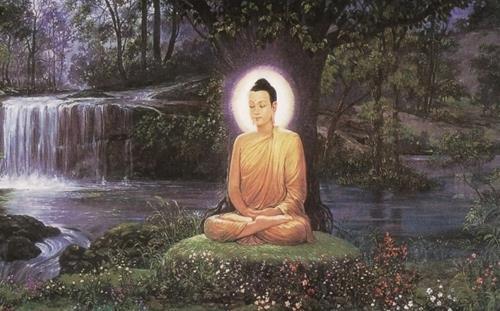 Có phải Đức Phật không đủ hiểu biết để trả lời những câu hỏi này không?