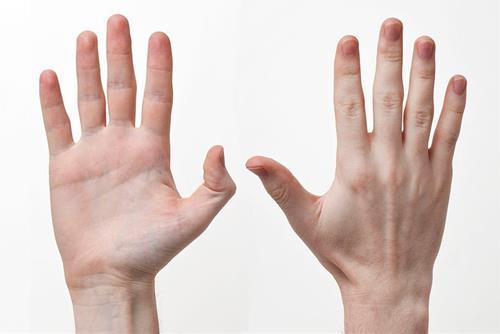 Xem bói tay trái hay phải?