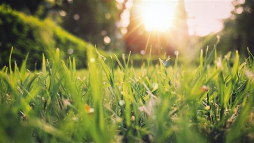 Tiết Xuân Phân là gì?