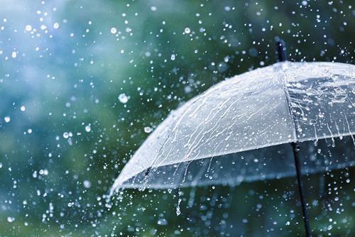 Dự báo thời tiết ngày mai 8/6/2021