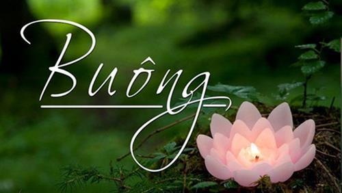 Học Phật để biết buông đúng lúc