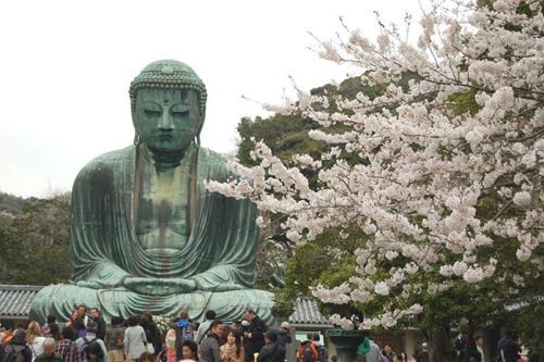 Đại tượng Phật Kamakura ở Nhật Bản