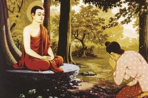 Lời Phật dạy về việc tự thấy xấu hổ