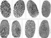 Khám phá bí mật ẩn giấu sau mỗi đường vân tay (phần 1)