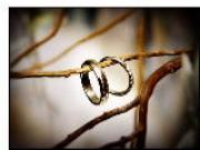 Chọn nhẫn cưới ý nghĩa cho hôn nhân trọn vẹn