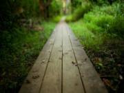 Thận trọng khi thấy con đường trong giấc mơ