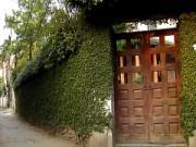 Dương cơ tam yếu: Cổng, cửa - Phần 2
