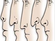Tương quan tướng mũi và tính cách con người