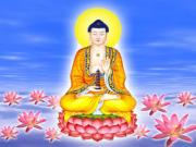 30/9 âm lịch - tỏ lòng thành kính ngày Phật Dược Sư giáng sinh