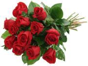 Chẳng giấc mơ nào đẹp bằng giấc mơ hoa hồng