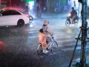Những bức ảnh ấm lòng mùa mưa bão
