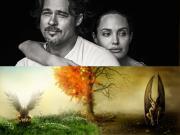 Angelina Jolie và Brad Pitt ly hôn: Nhân quả báo ứng?