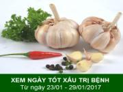 Xem ngày tốt xấu trị bách bệnh tiêu tan: Tuần từ 23/1 đến 29/1/2017 (phần 2)
