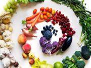 Thực phẩm dưỡng sinh cho 12 cung hoàng đạo trong tiết Tiểu Hàn