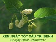 Xem ngày tốt xấu trị bách bệnh tiêu tan: Tuần từ 20/2 - 26/2/2017 (Phần 2)